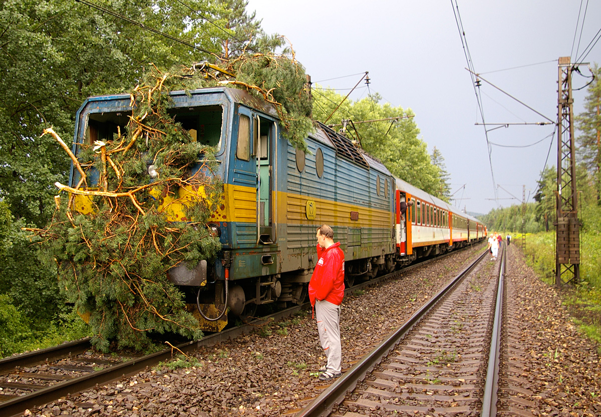 ZSSK train after collision with tree