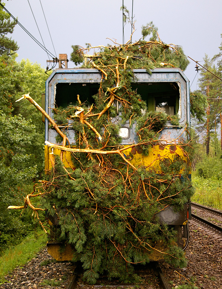ZSSK train after collision with a tree