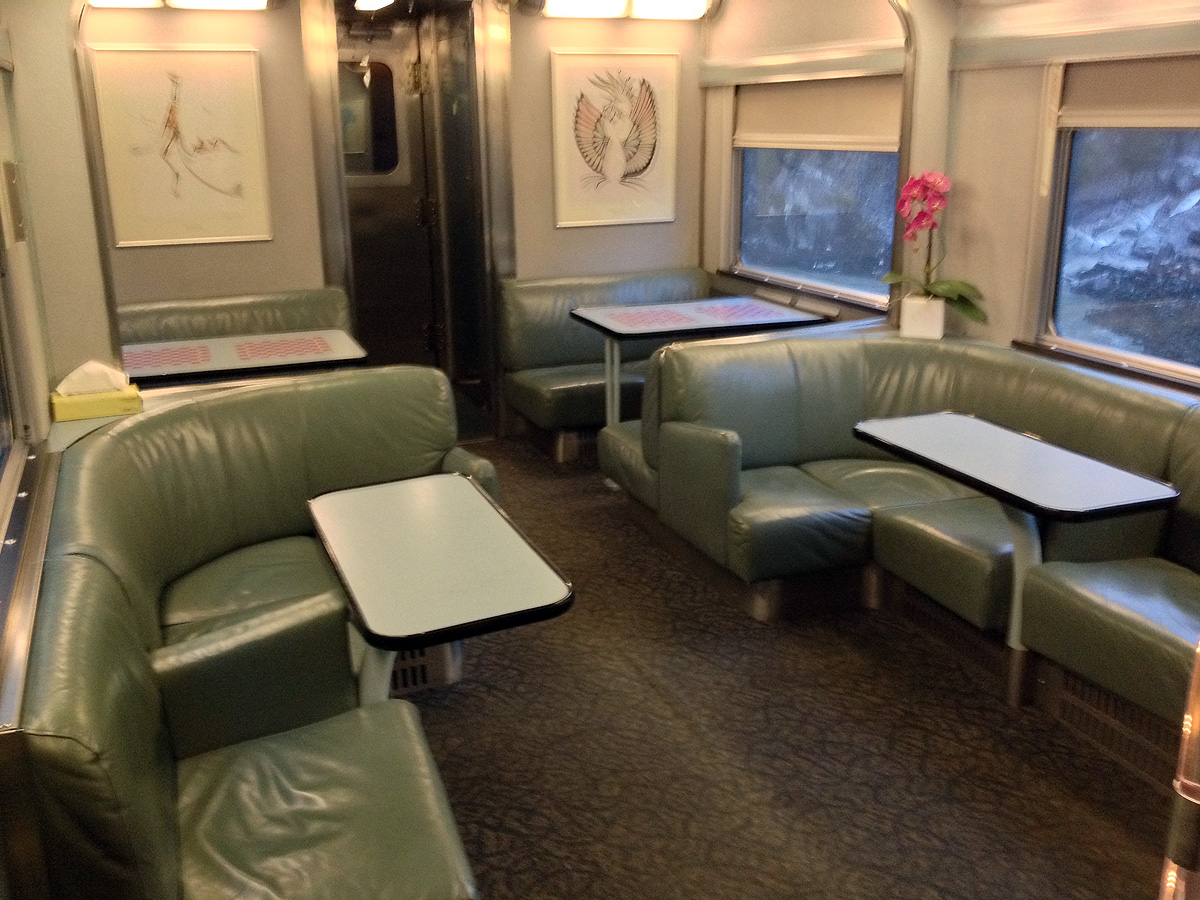Lower level of a Skyline dome car