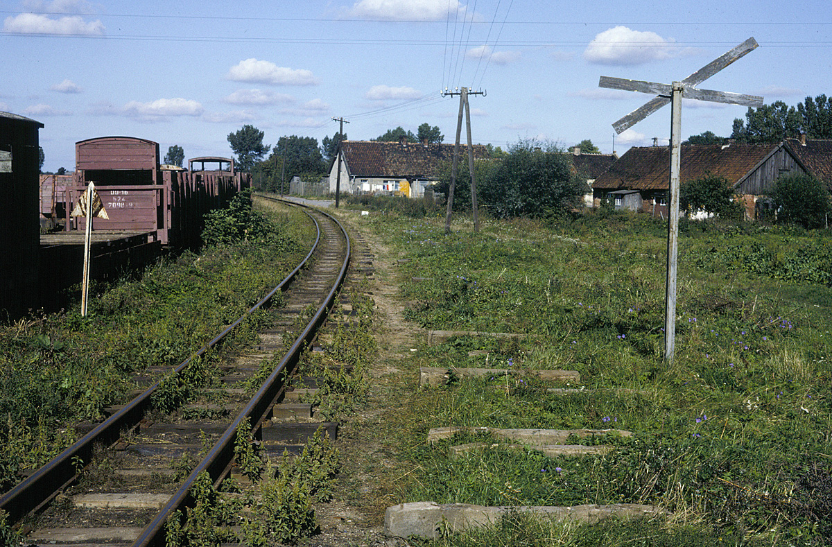 Narrow gauge track at Lisewo