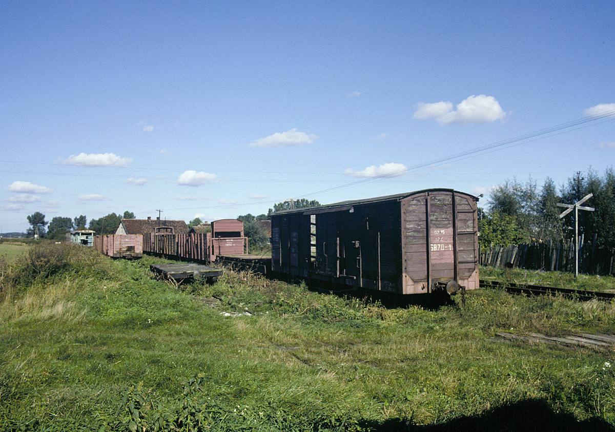 Freight wagons at Lisewo