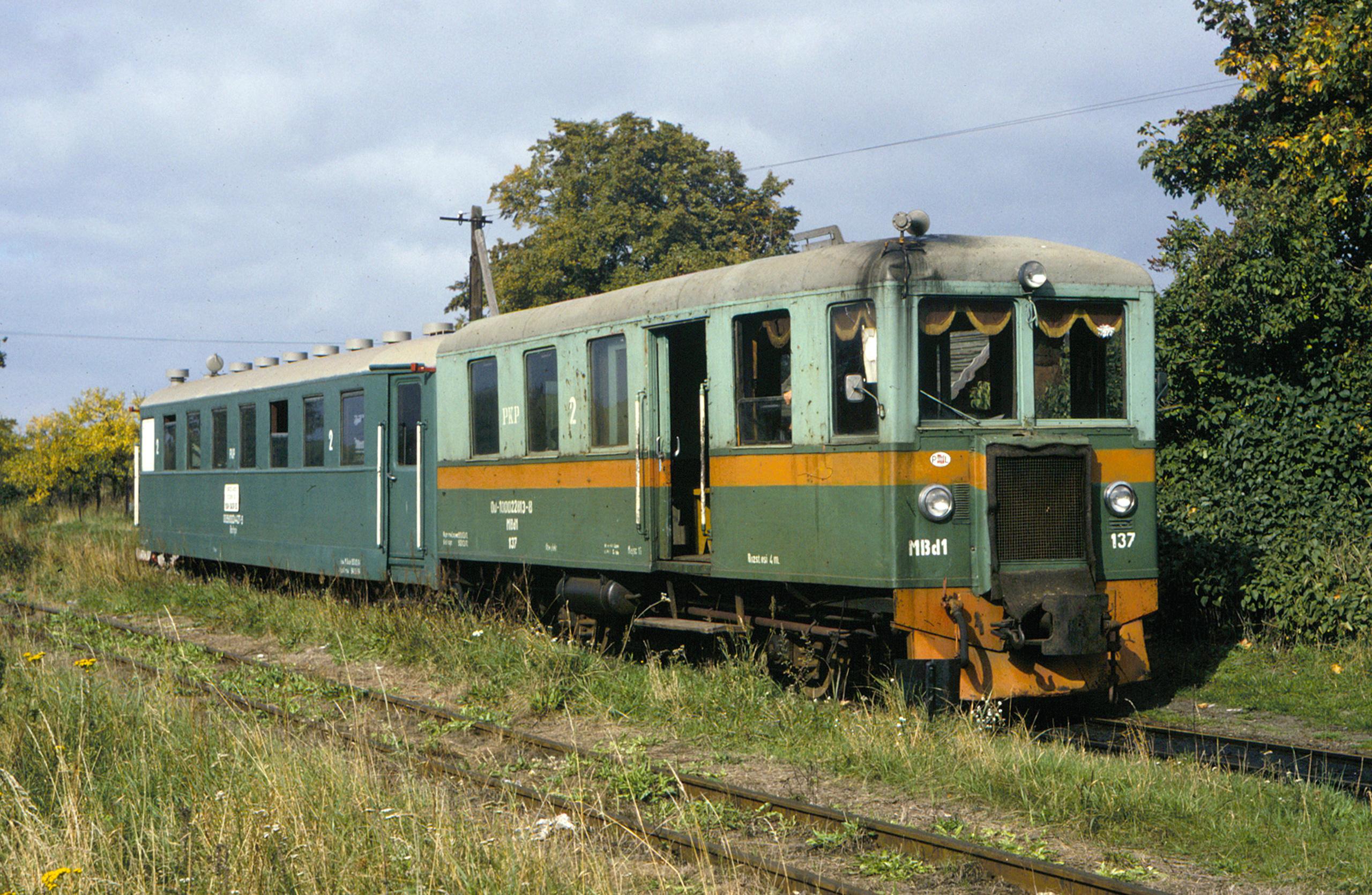 Excursion train at Prawy Brzeg Wisły