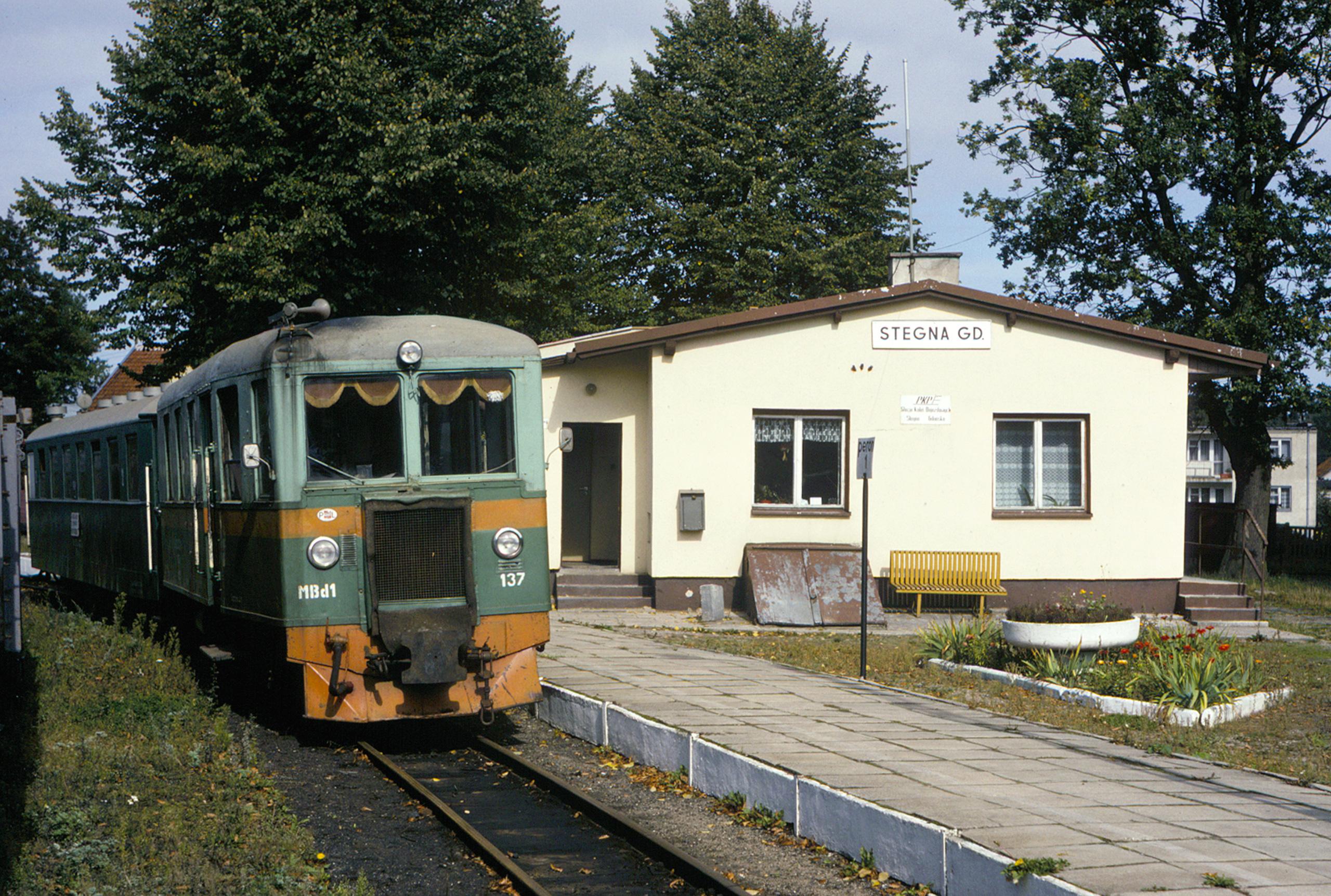 Excursion train at Stegna Gdańska