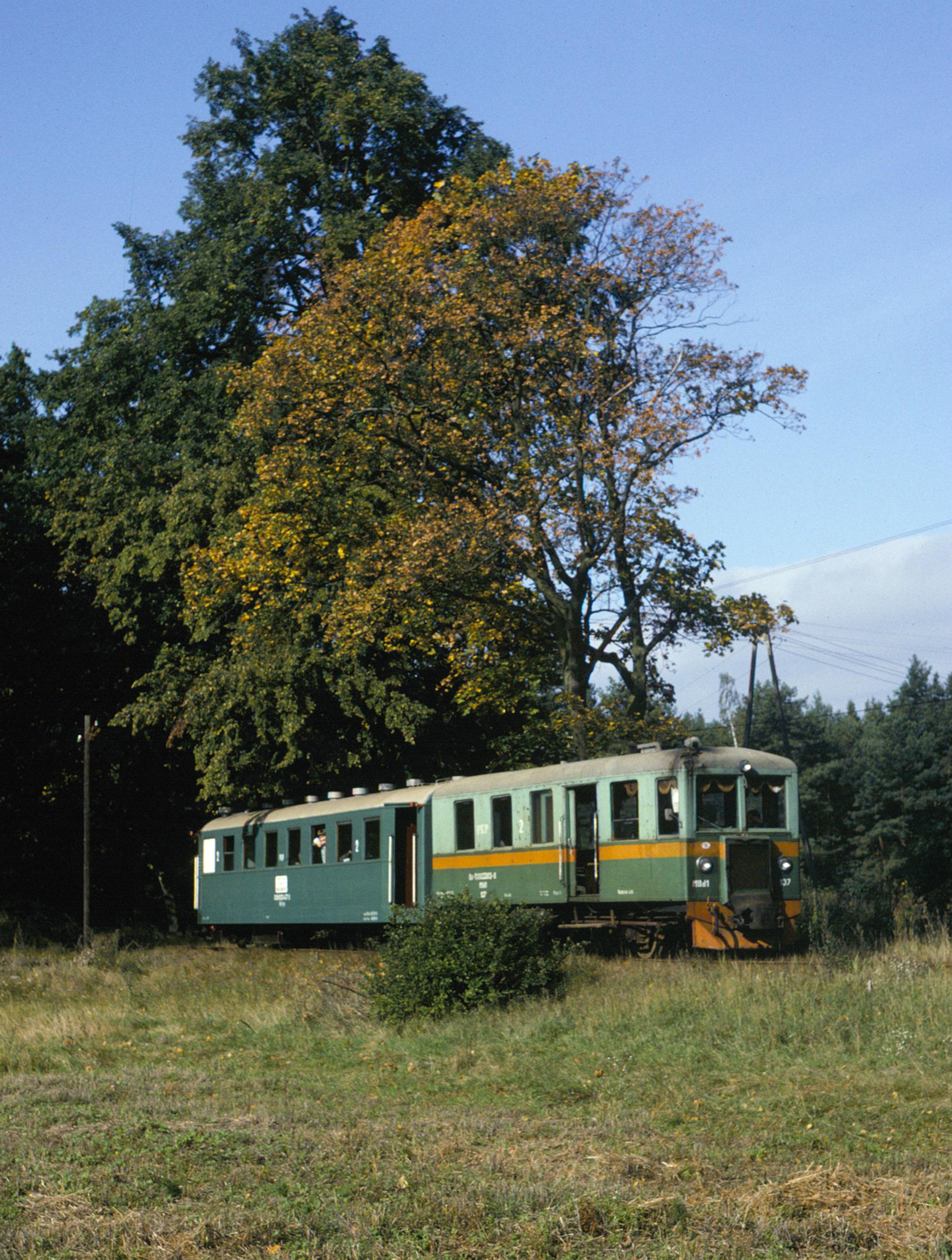 Travelling eastward to Stegna Gdańska