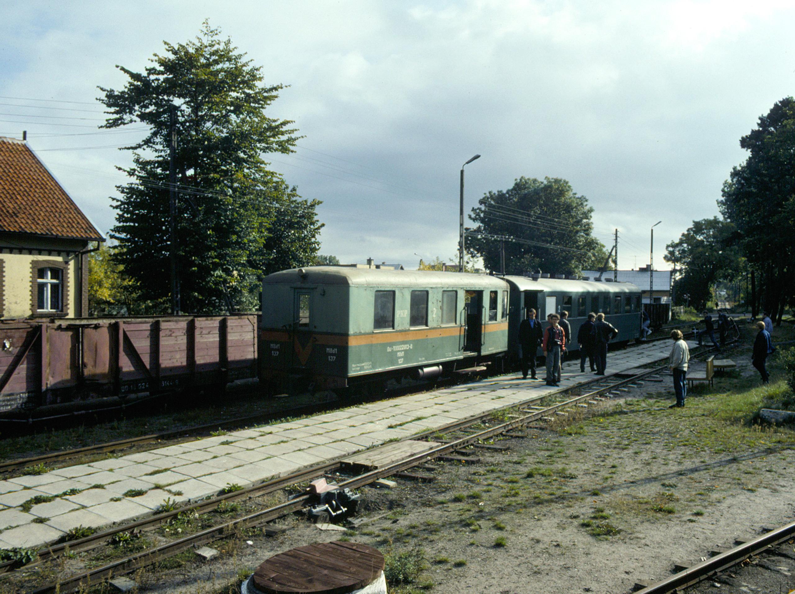 Excursion train at Stegna Gdańska.