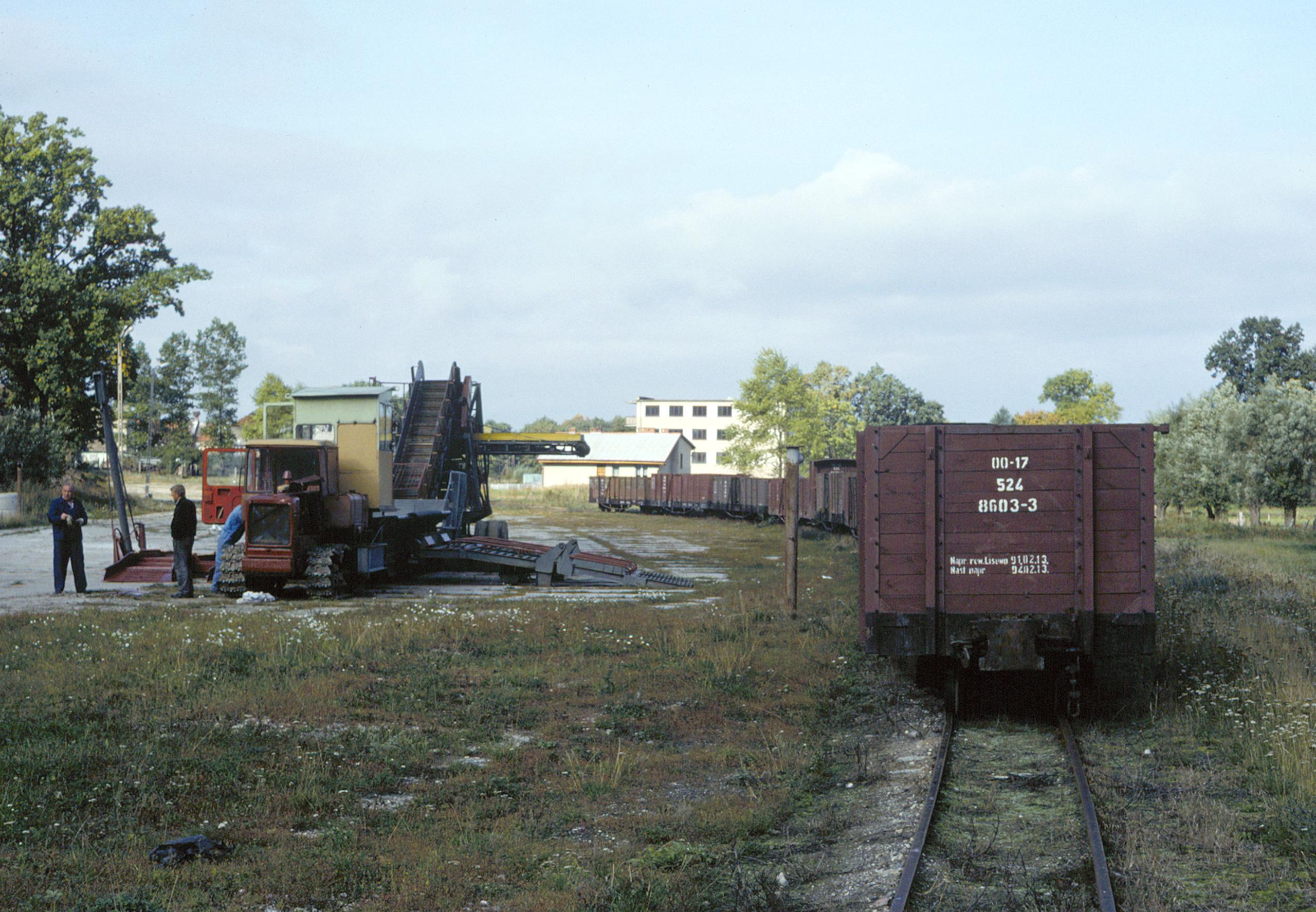 Freight cars at Stegna Gdańska.