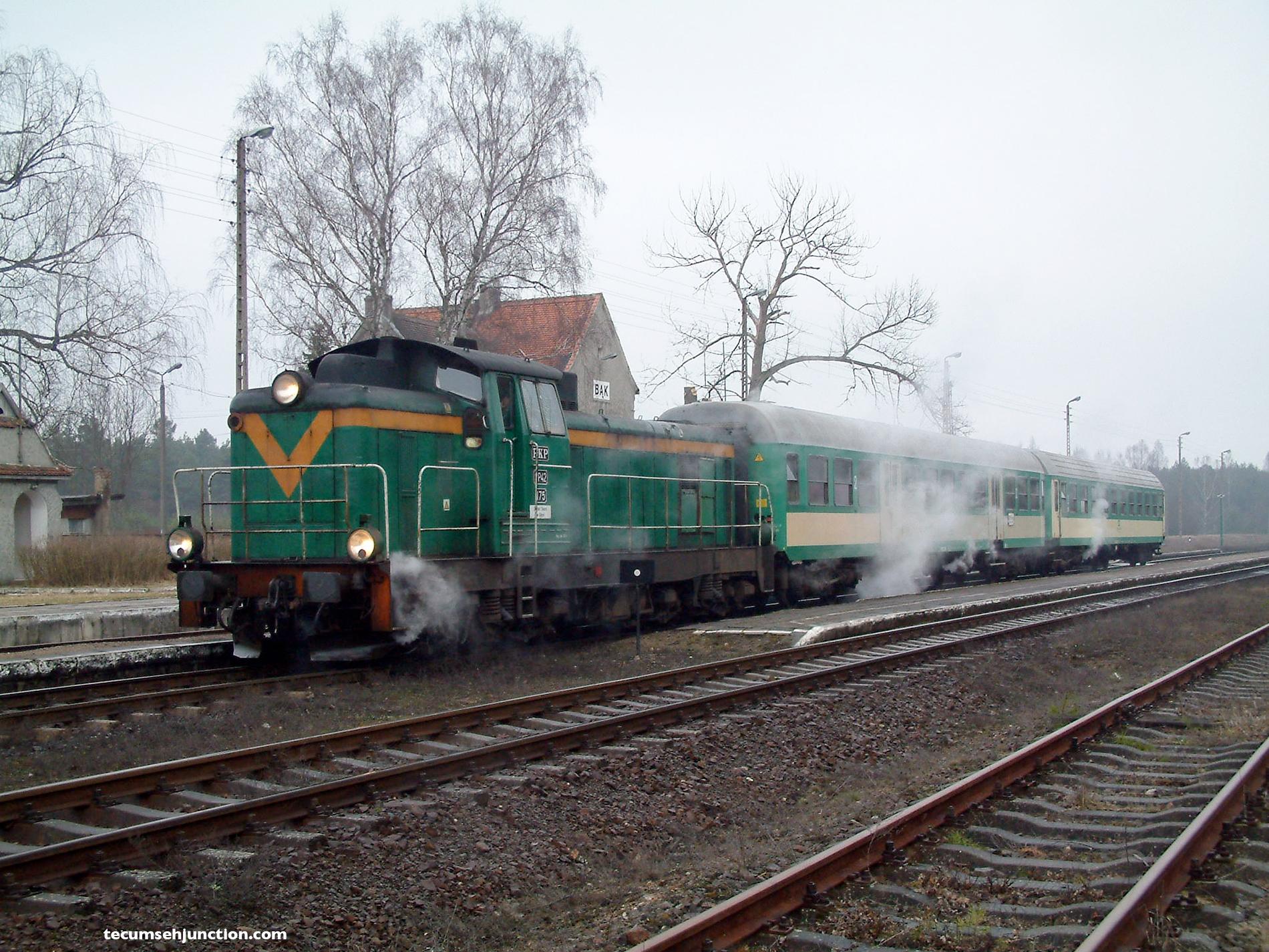 PKP train at Bąk